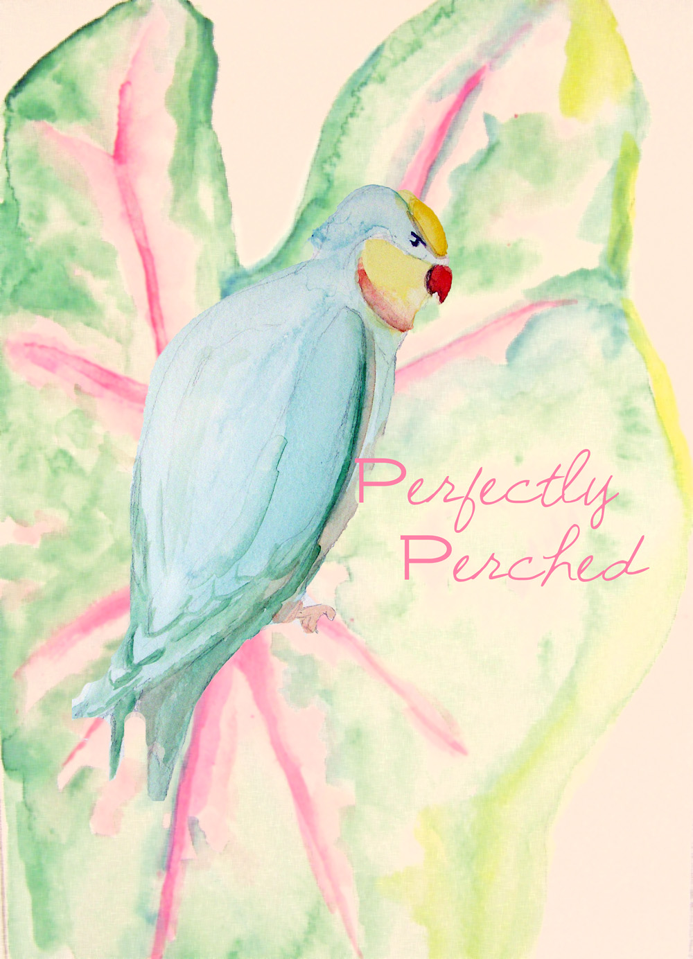 Parakeetperch
