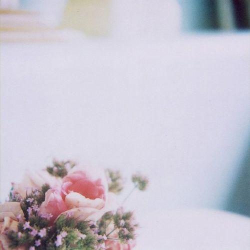 Www.flickr-4