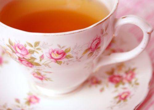 Little Rose Teacup - 5 x 7 Matt Photo Print